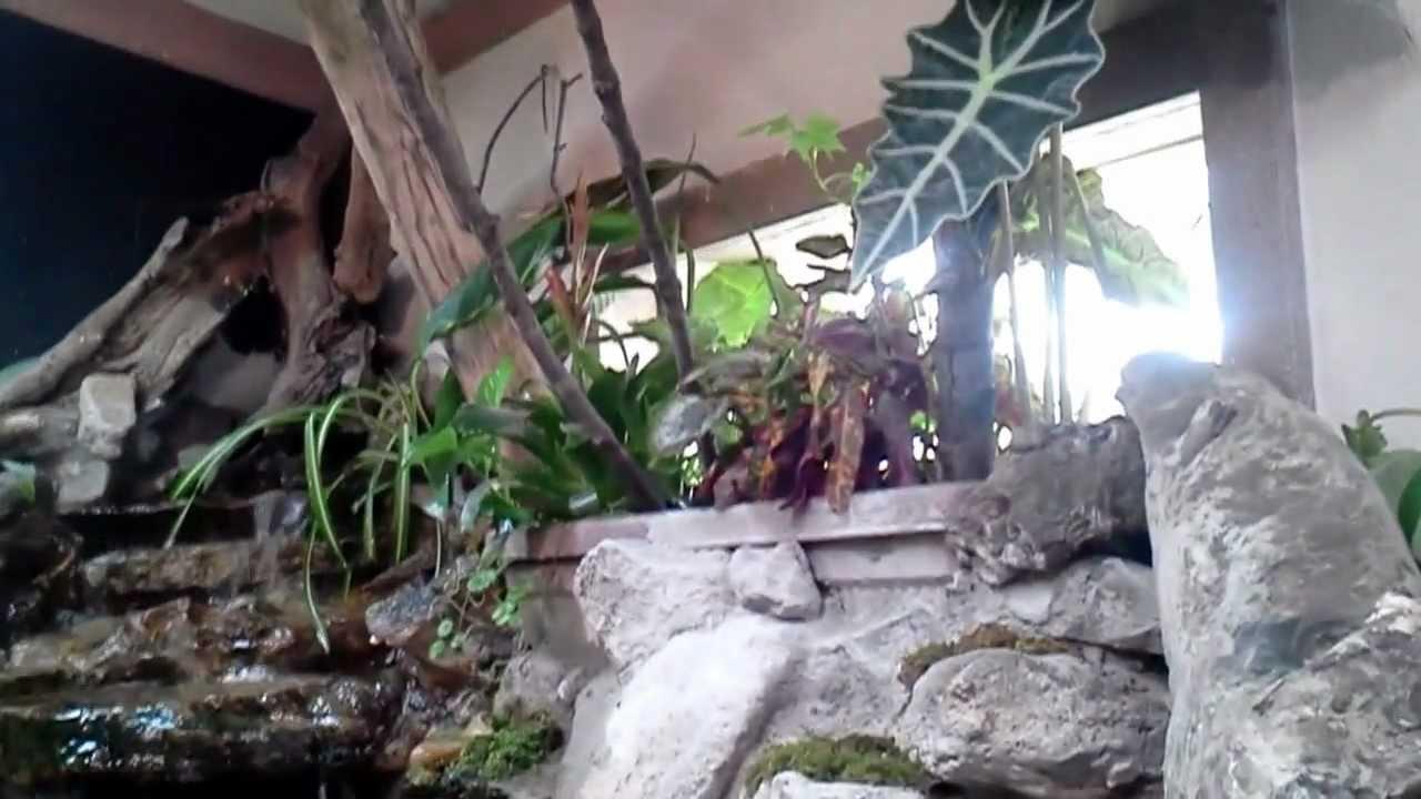 Indoor monster fish pond youtube for Indoor fishing