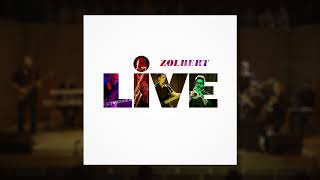 Zolbert - Everybody Wants To Rule The World - cover (Live)