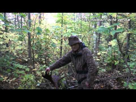 Moose hunting    top call +  vocalises en zone 2 ouest  Québec