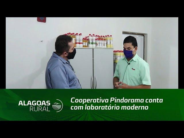 Cooperativa Pindorama conta com laboratório moderno para qualidade de seus produtos