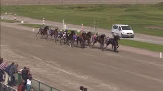 Vidéo de la course PMU PRIX ANEMONE.NL