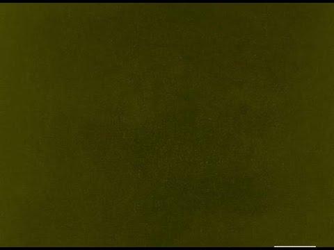 untitled 02 - Kendrick Lamar [Instrumental]