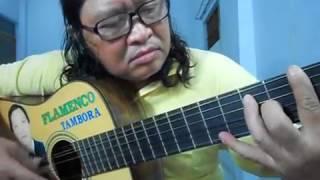 Love Story (Classic Guitar) (Tambora Flamenco) -  Hưng Trần