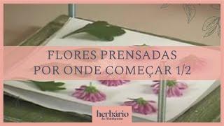 Seleção de Técnicas -Como Fazer Flores Prensadas