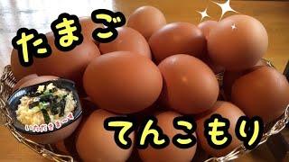 卵 かけ ご飯 豊岡
