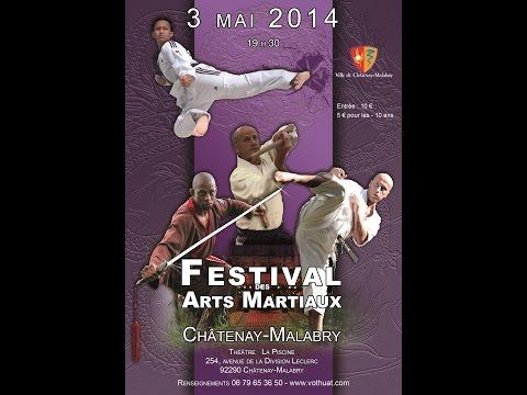 Le festival des arts martiaux de Châtenay-Malabry 2014