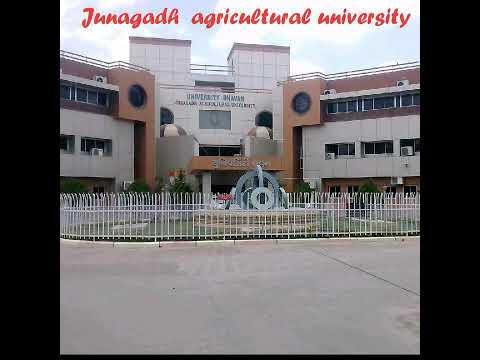 Junagadh agricultural university college.