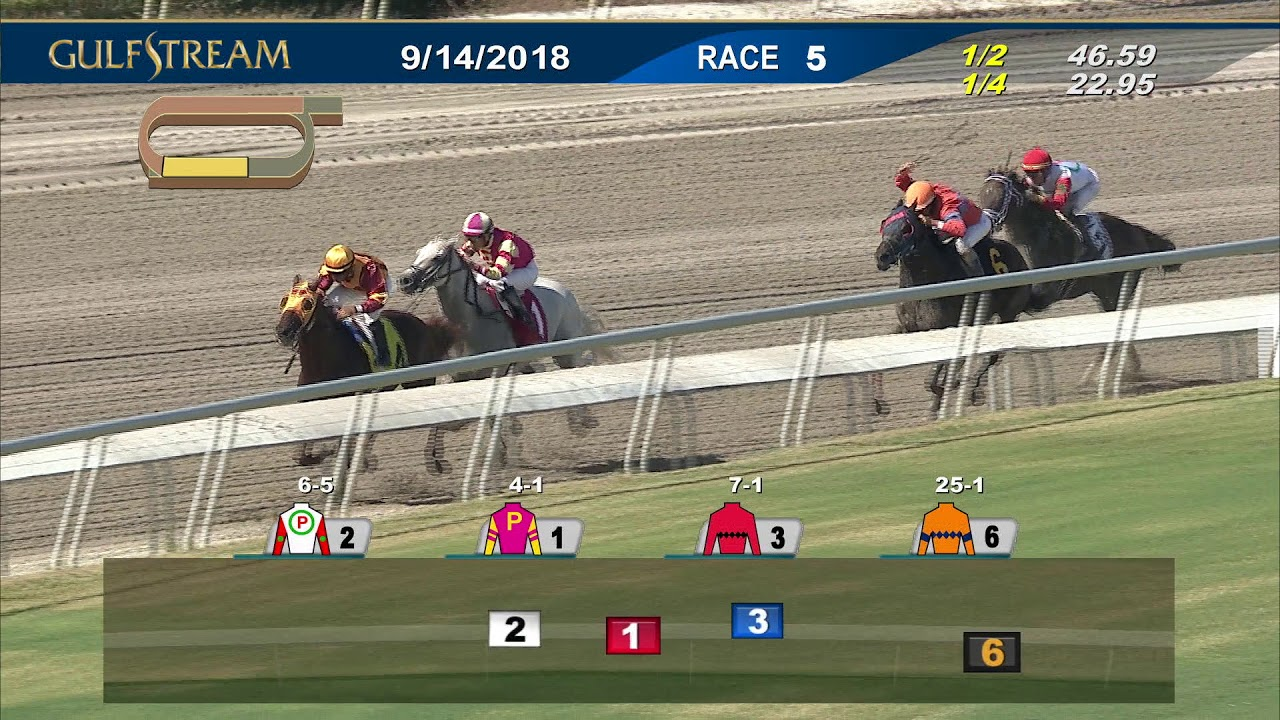 Gulfstream Park September 14, 2018 Race 5