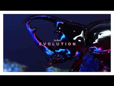 Aedan - EVOLUTION