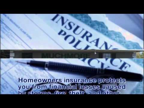 Auto Insurance   New Port Richey   FL