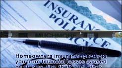 Auto Insurance   New Port Richey   FL