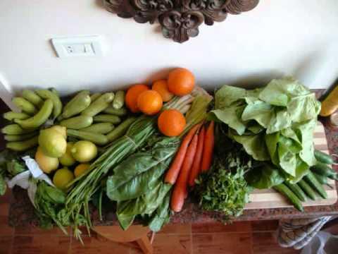 Nourriture Biologique Pour la Santé
