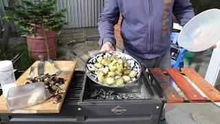 Запеченые на мангале овощи гриль(кабачки, баклажаны)