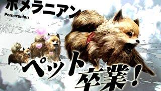 飼い主が死んだ小型犬が東京でサバイバル【TOKYO JUNGLE 実況】#2