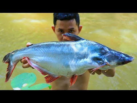 Wow! Yummy Fish Soup Cook Recipe In Forest