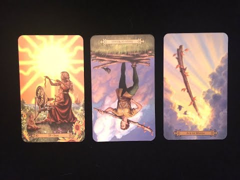 Daily Tarot Reading for August 6, 2017 ** Heaps of Sunshine! ** Magnetic Tarot