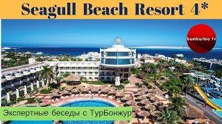 Seagull Beach Resort 4*, ЕГИПЕТ, Хургада - обзор отеля | Экспертные беседы с ТурБонжур