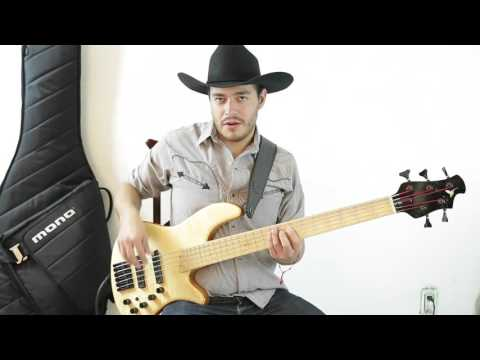 Victor Gil bass - tutorial- rey de la kush