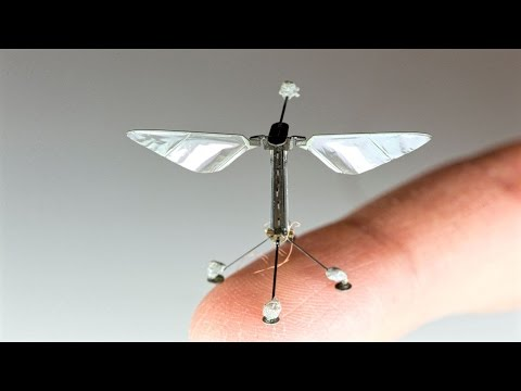 World's Smallest RoboBee Saves Energy With Ability To Perch