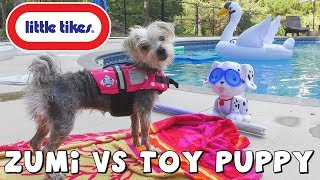 DCTC Puppy Dog Zumi Swimming with Toy Dog   Little Tikes Swim To Me Puppy with DCTC Amy Jo and Zumi