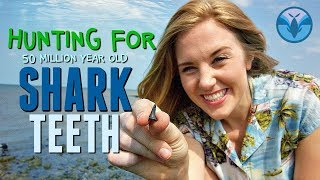 Hunting for 50 MILLION year old Shark Teeth!!! | Maddie Moate