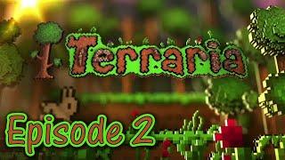 TERRARIA #2: NHÀ NHỎ ĐƠN SƠ!!