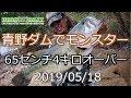 『青野ダム』でリアクレがモンスターバスを釣る!!『ロクマル