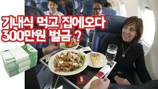 수많은 한국인이 기내식먹고 300만원 벌금을 내는 이유 - 트래블튜브