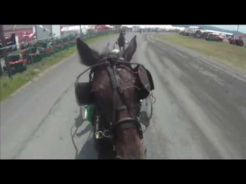 Action Cam: Part 1 - Starter Clarence Martin