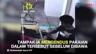 Download Video ALAMAK! Pria Ini Curi Pakaian Dalam Cewek, Lalu Diciumnya. Hmmmh... MP3 3GP MP4