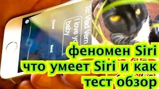 феномен Siri что умеет Siri и как тест обзор iphone 4 5c 5s 6 IPhone 6 6s новости фишки приколы о св