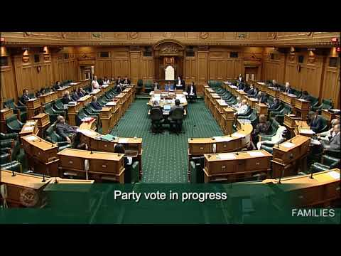 Families Package (Income Tax and Benefits) Bill- Committee Stage - Part 2 - Video 2