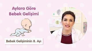 Bebek Gelişiminin 8. Ayı - Dr. Aylin Şimşek