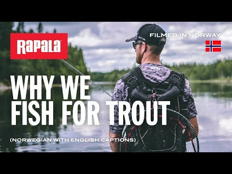Trout Lures For Norway | Rapala® (English Captions)