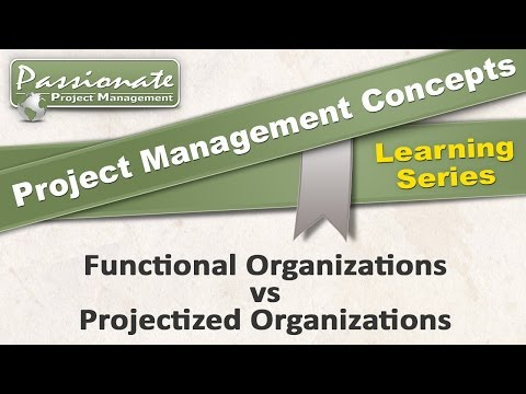 Project Management Concept Functional Organization Vs Projectized Organization
