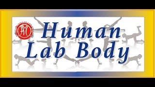 HLB exercise by Arnava & Apurva