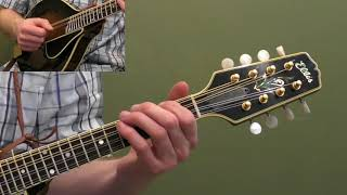 Free Mandolin Mini Lesson: Basic Right Hand Technique