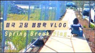 미국 일상 VLOG) ) (eng)spring break vlog :: 미국 여고생의 봄방학 일상: 도서관, 테니스, 생일, 다이어리 꾸미기