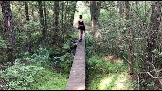 Hiking and Camping Batona Trail, New Jersey (10 Miles Total)