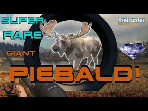 Giant RARE MOOSE with the 270 RIFLE!!  Call of the WILD THEHUNTER 2018