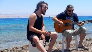 Redsea live acoustic: Sassi/Jennings – 'Reveal'