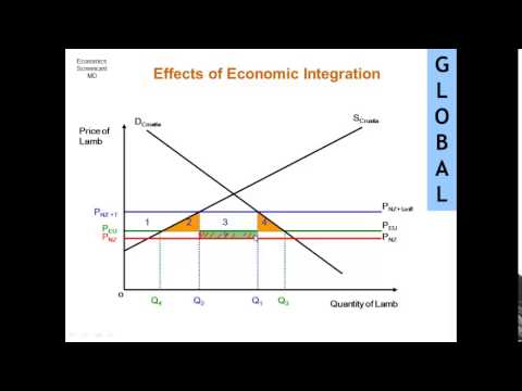Effects of Economic Integration
