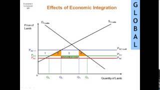 Effects of Economic Integration