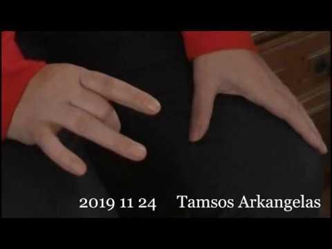 2019 11 24 Pranešimas ašrame. Tamsos Arkangelas: Aš esu Kūrejo dalis, esanti jumyse