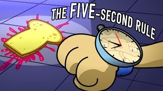 Is the five-second rule true?