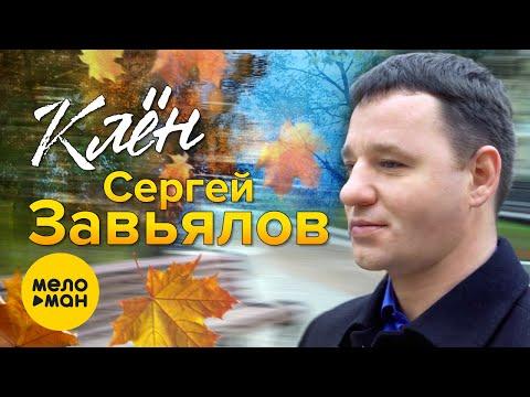 Сергей Завьялов  - Клён