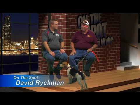 On The Spot - Dave Ryckman, Nov. 2017 (HD)