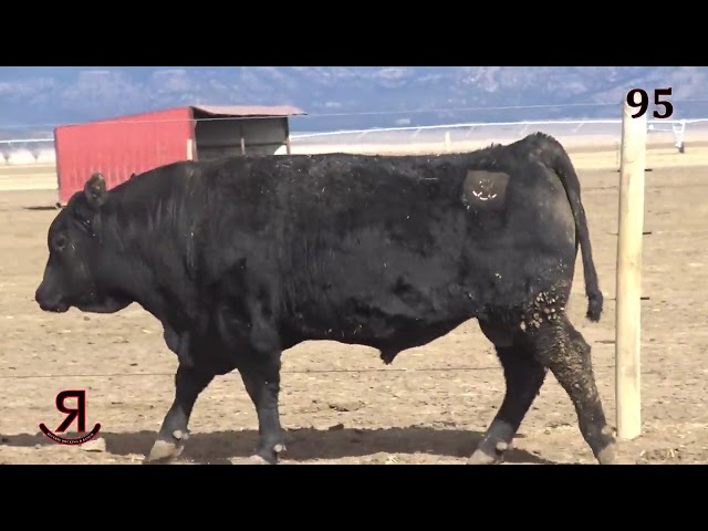 Reverse Rocking R Ranch Lot 95