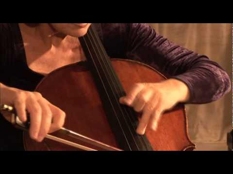 Maria Kliegel: How to play the Masterworks [Naxos 2.110280-81] - trailer
