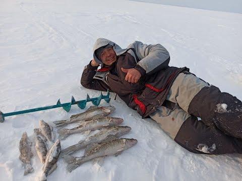 Половили судака на Камско-Волжских просторах. Отличная рыбалка выдалась.